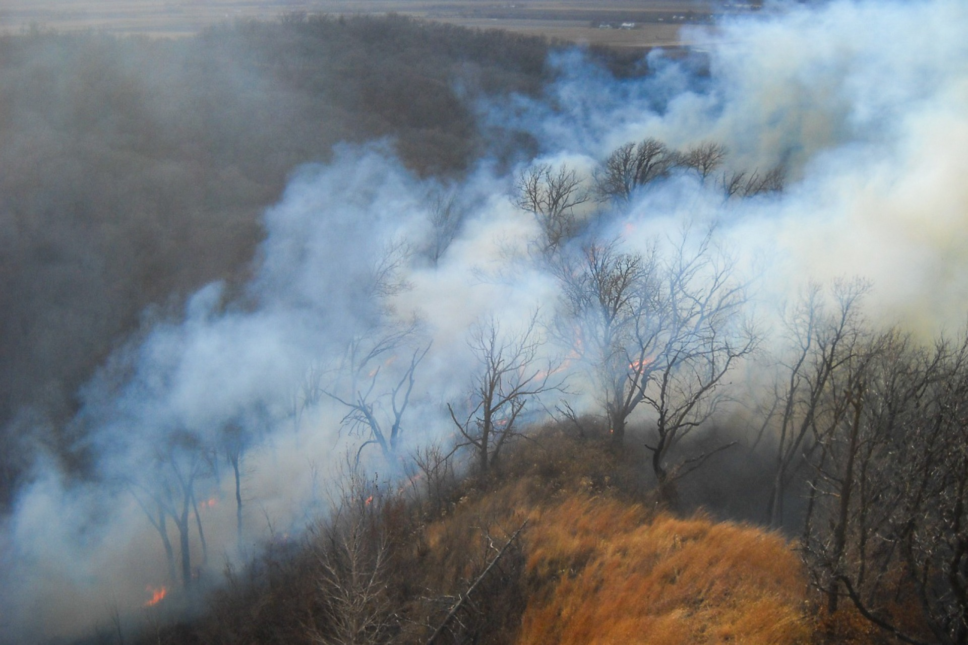 Prescribed fire in a Pottawattamie County park.